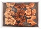Palash rožica na piku 6cm /24kos
