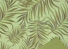 Rola Tropicalis