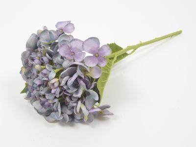 Hortenzija vejica