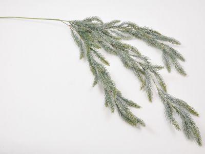 Smreka veja viseča zasnežena