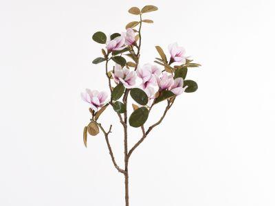 Magnolija veja 96,5cm