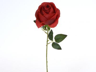Vrtnica vejica 51cm