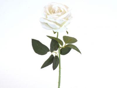 Vrtnica vejica 50cm