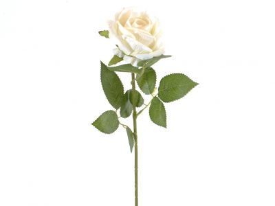Vrtnica vejica 77cm