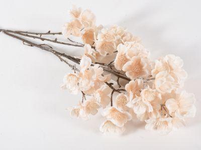 Češnja cvetoča vejica
