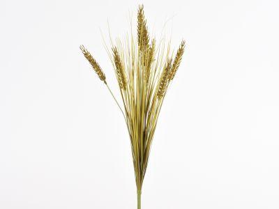 Pšenica šopek 51cm