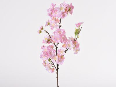 Češnjeva vejica 54cm