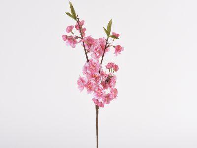 Češnjeva vejica 53cm