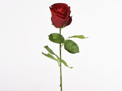 Vrtnica enojna vejica 65cm