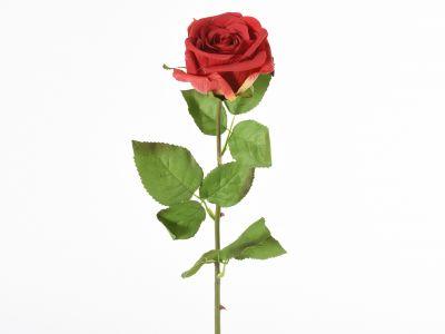 Vrtnica enojna 70cm