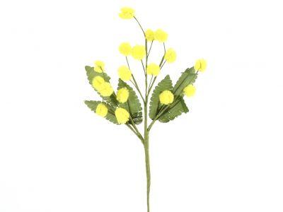 Mimoza pik 23cm/12kos