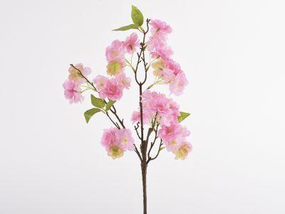 Češnjeva vejica cvetoča 156cm