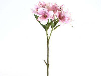 Alstromerija vejica x2, 65cm