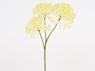 Česnov cvet x3, 36cm