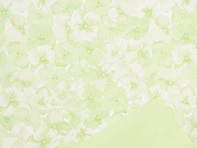 Rola Hydrangea