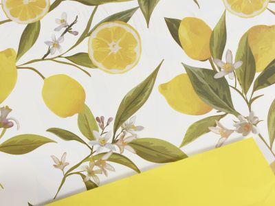 Pola Limoni