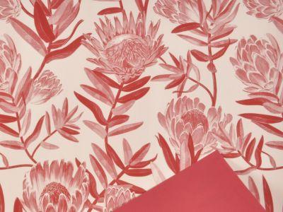 Rola Protea