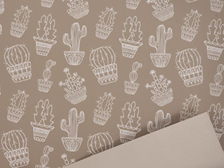 Rola Cactus paper touch