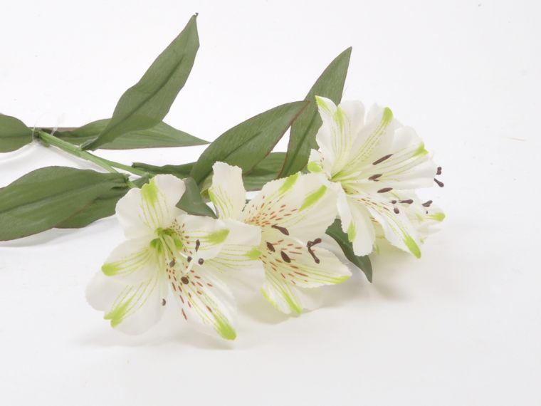 Alstomeria vejica x2, 5 cvetov 68cm