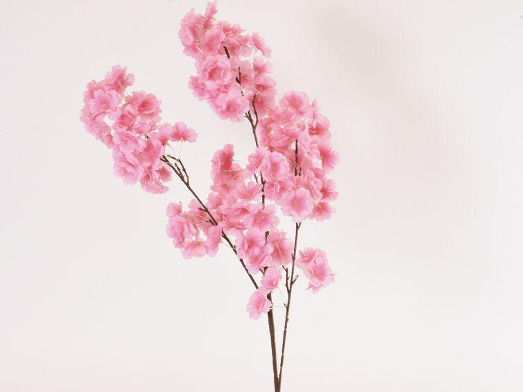 Češnjeva vejica 110cm cvetoča