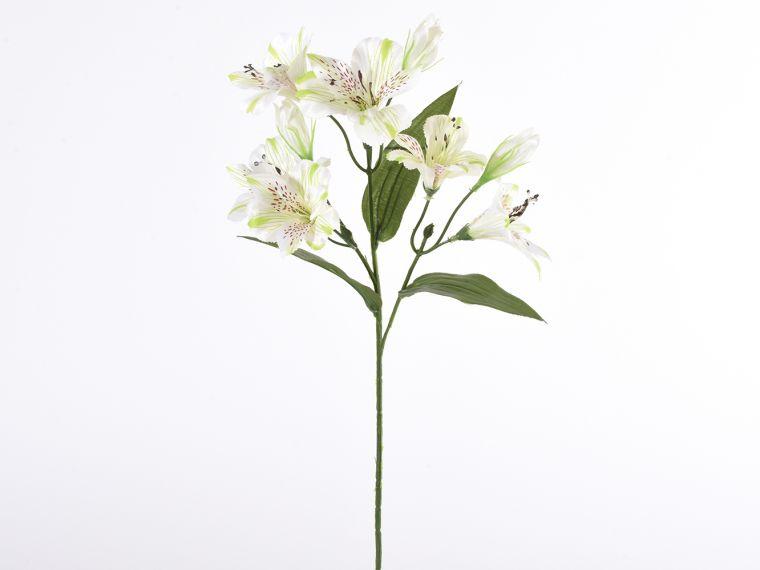 Alstromeria vejica x3, 64cm