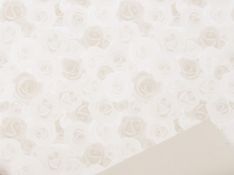 Marjetica Roses